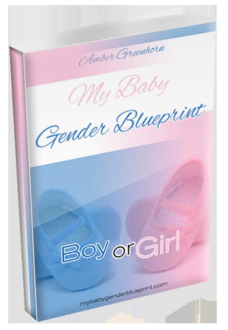 My baby gender blueprint my baby gender blueprint free download malvernweather Images